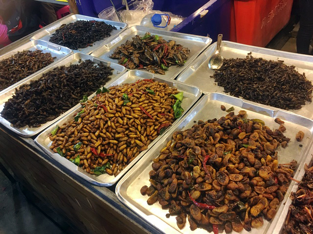 Bangkok fried insects